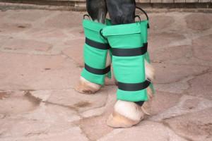 Magnefteldtherapie an den Beinen